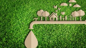 Clean Living & Sustainability